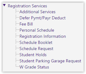 Registration Services drop down menu in the myLSU portal